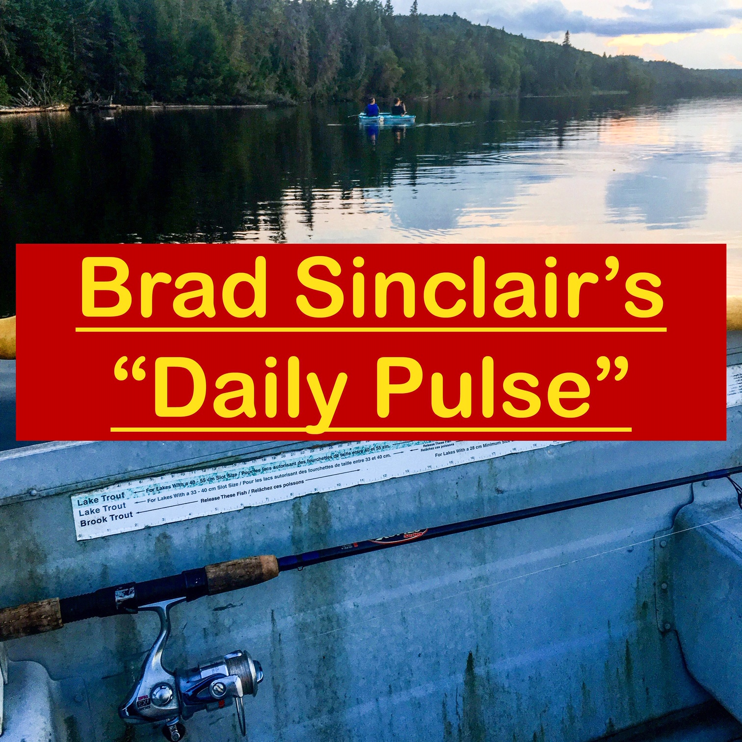 Week in Review of Brad Sinclair's Walk and Talk! November 5/2018 to November 9th